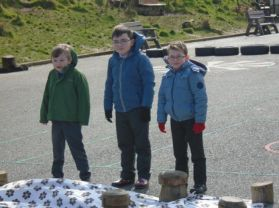 P3 Science Experiment