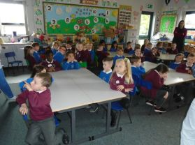 Brilliant fun for our P1s at Bush Primary School